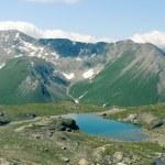 lindo panorama dos Alpes na Suíça — Foto Stock