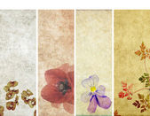 Lovely set of banners with floral elements and earthy textures. useful design elements — Stock Photo