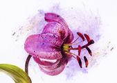 Precioso elemento fondo y diseño floral — Foto de Stock