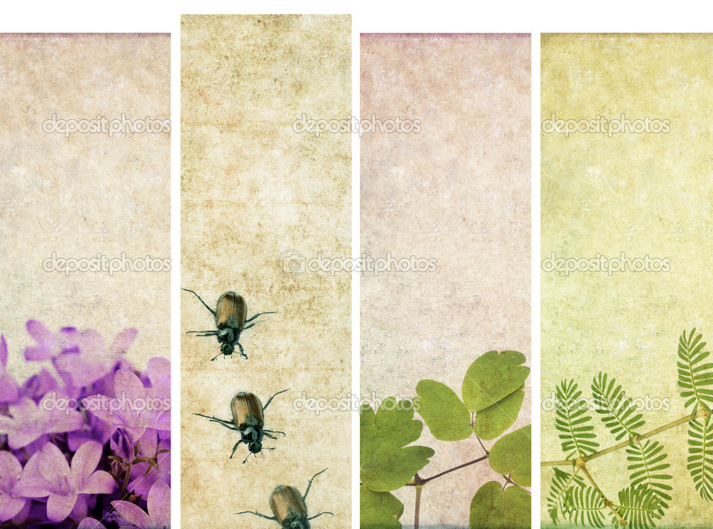 Lovely set of banners with floral elements and earthy textures. useful design elements — Stock Photo #9958169