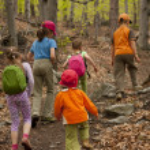 Paseo de los niños al bosque — Foto de Stock   #10033681