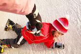 Fall on ice skates — Stock Photo