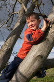 Happy boy, child climbing on a tree — Stock Photo