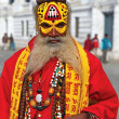 Stock Photo: Nepalese sadhu