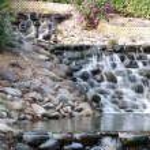Stream water movement — Stock Photo