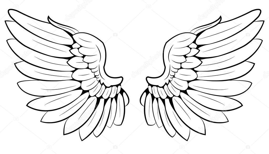 A pair of wings  Stock Vector #10455658