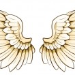 A pair of wings — Stock Vector