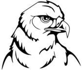 Head of an eagle — Stock Vector
