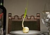 Onion Feast — Stock Photo