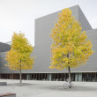 Modern building with yellow trees and bike — Stock Photo #10059929