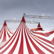 Wonderful spectacle of circus — Stock Photo #9950702