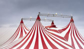The wonderful spectacle of the circus — Stock Photo