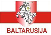 Flag of Belarus — Stock Vector