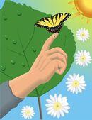 Butterfly on finger — Stock Vector
