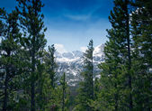 Mountain View in Rocky Mountain National Park — Stock Photo