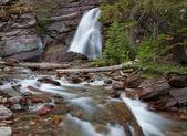Stream i glacier national park — Stockfoto