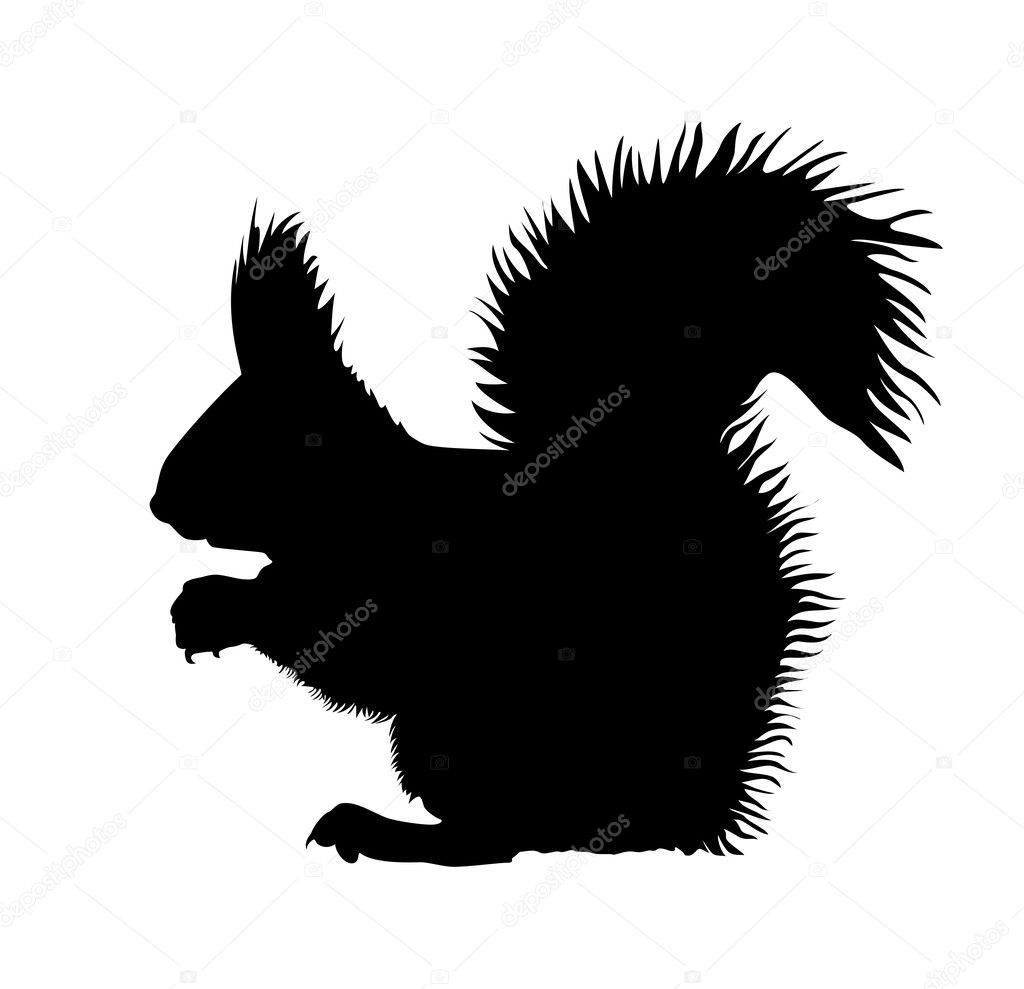 Displaying 20> Images For - Squirrel Silhouette...