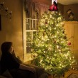 Stock Photo: Christmas tree with admirer