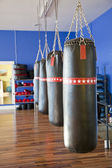 Row of punching bags — Stock Photo