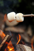 Marshmallows001 — Stock Photo