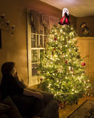 Christmas tree with admirer — Stock Photo