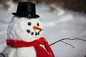 Snowman face — Stock Photo