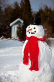 Winter Snowman — Stock Photo
