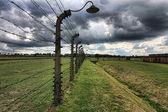 Aushwitz の生 concetration キャンプ — ストック写真