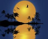Sunset with palmtree silhouette. — Stock Photo