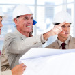 Architect explaining the project to the team — Stock Photo #10281497