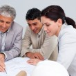 Portrait of architects studying plans — Stock Photo #10286537
