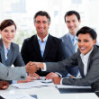 Stock Photo: Diverse business group closing deal