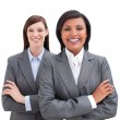Stock Photo: Close-up of two business women
