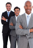 Portrait of confident business team — Stockfoto