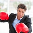 Furious businessmwearing boxing gloves — Stock Photo #10292335