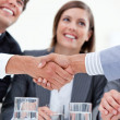 Smiling business closing a deal — Stock Photo #10292466