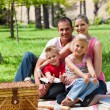 Family having a picnic smiling at the camera — Stock Photo