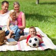 Happy parents and children picnicing in the park — Stockfoto #10294390