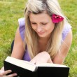 Charming woman reading a book in a park — Stock Photo
