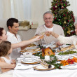 Family tusting in a Christmas dinner — Stock Photo #10298153