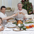 Family drinking a toast in a Christmas dinner — Stock Photo