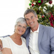 Portrait of mature couple celebrating Christmas — Stock Photo #10298266