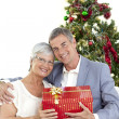 Senior couple holding a Christmas present — Stock Photo