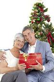 Altes paar hält ein weihnachtsgeschenk — Stockfoto