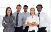Portrait of a business team in an office — Stock Photo