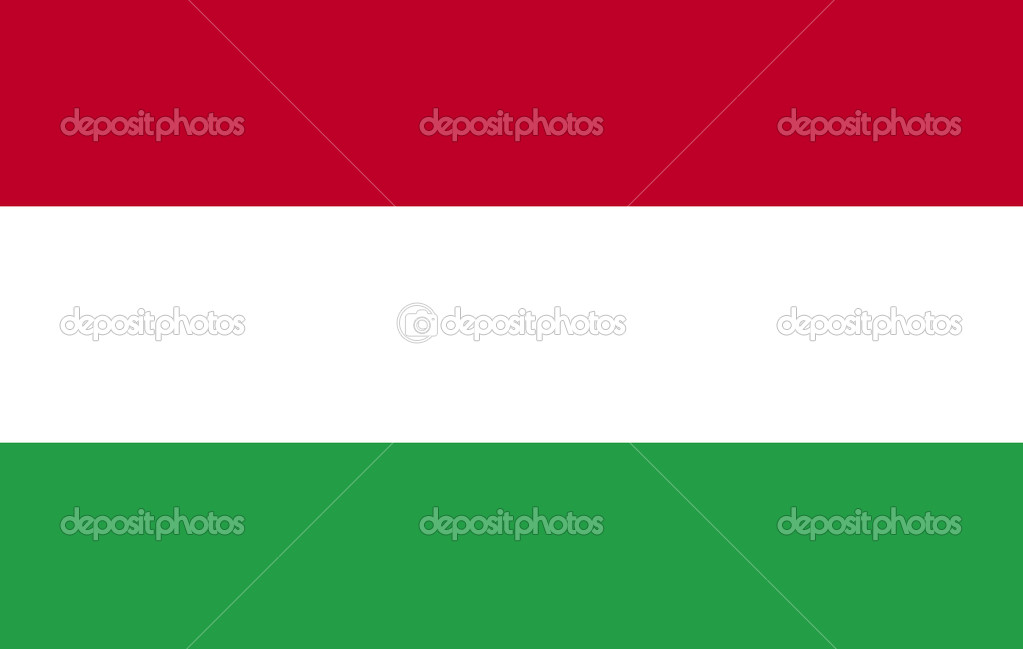 Hungarian Flag — Stock Photo #10300610