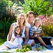 Young family having picnic in a park — Stock Photo