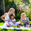 Mother and her children playing in a picnic — Stock Photo