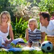 Stock Photo: Young family having fun in a picnic