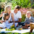 Stock Photo: Happy family playing together in a picnic